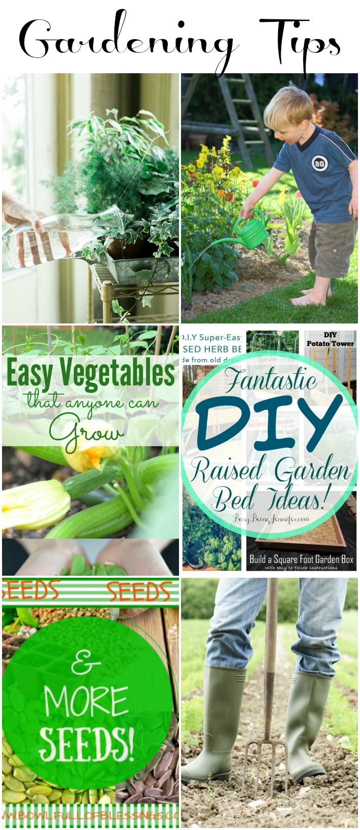 Gardening Tips collected by The NY Melrose Family