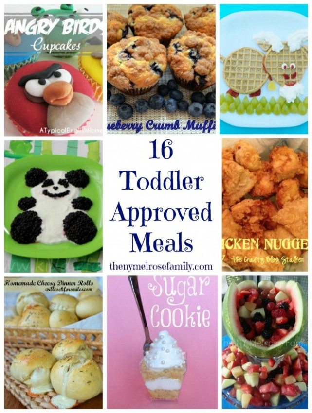 16-toddler-approved-meals