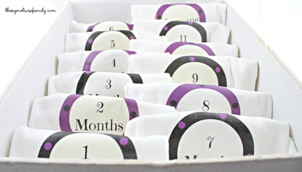 Best Baby Gifts Personalized Monthly Onesies