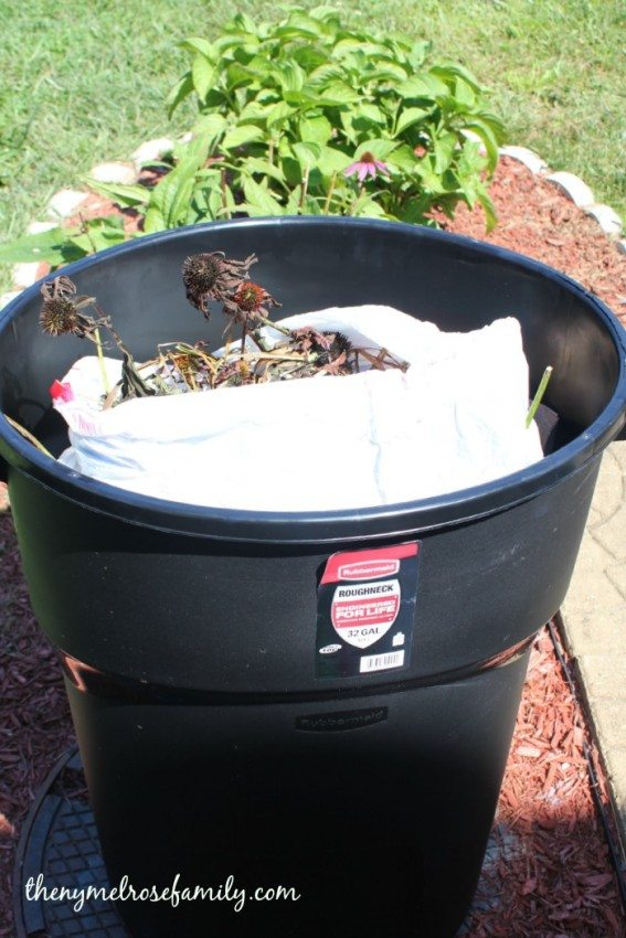Outdoor Cleaning Tips