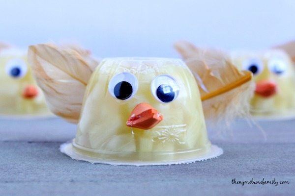 Chick Fruit Cup