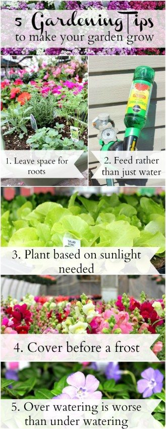 Gardening Tips to Make your Garden Grow Pinnable