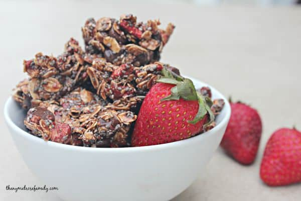 Chocolate Strawberry Healthy Snack