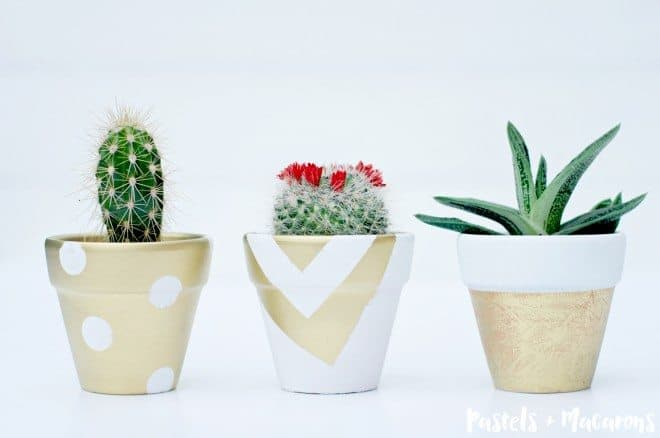 DIY Terra Cotta Pots with Succulents
