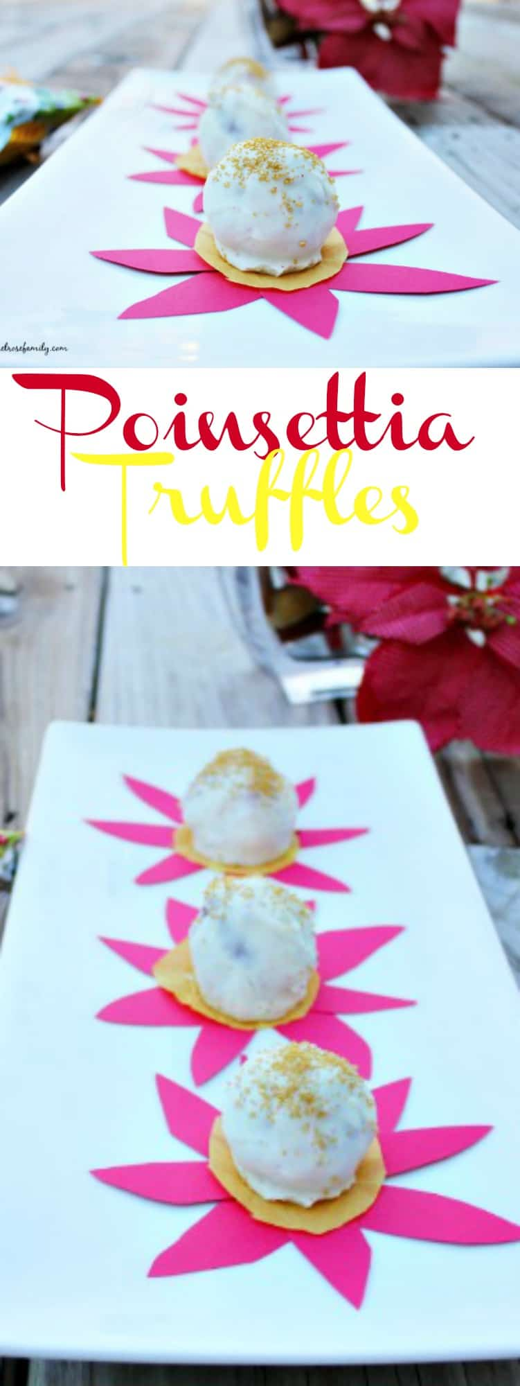 Poinsettia Truffles are the perfect Christmas Candy