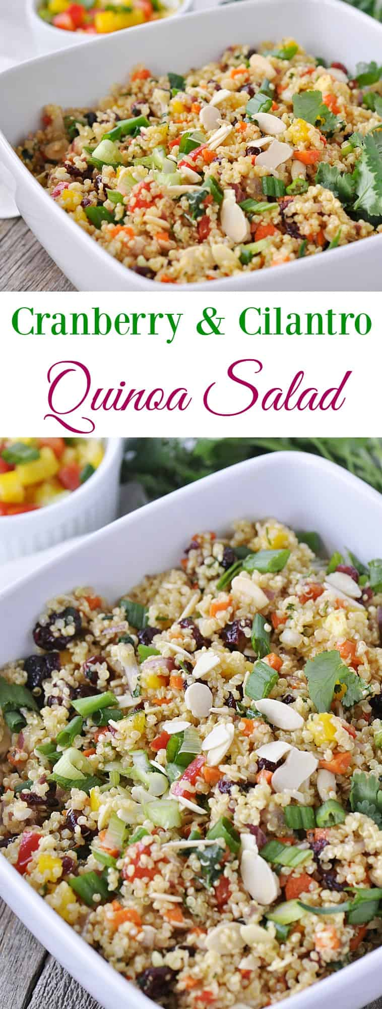 Cranberry & Cilantro Quinoa Salad is the perfect healthy side dish.