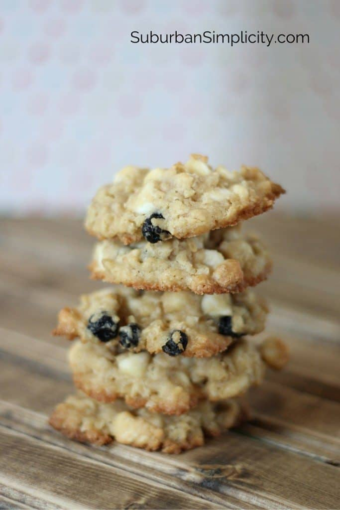 Cranberry-White-Chocolate-Oatmeal-Cookies-in-a-Jar-4-683x1024