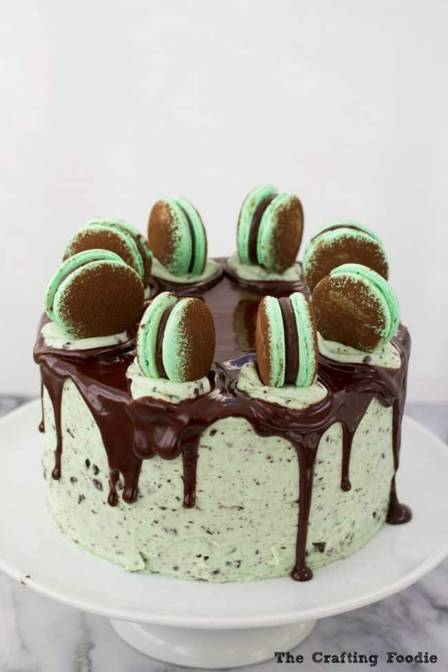 Chocolate Chip Mint Cake by The Crafting Foodie
