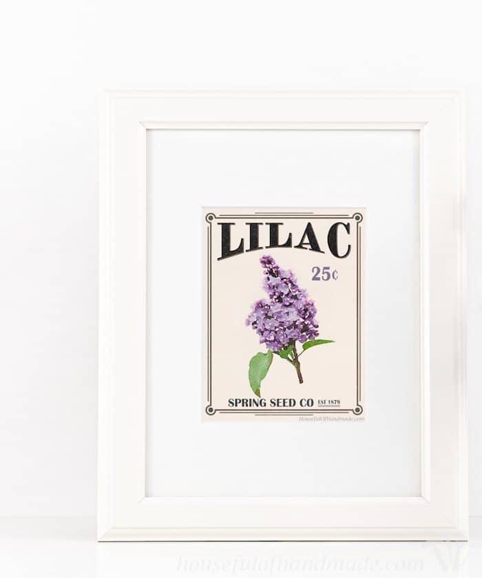 Free-Printable-Vintage-Seed-Packet-Art-3