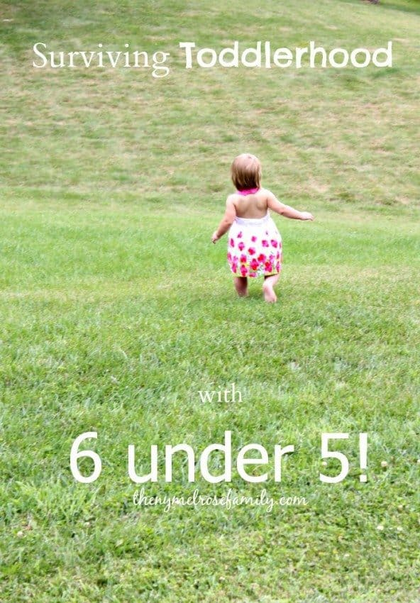 Surviving-Toddlerhood-with-6-under-5