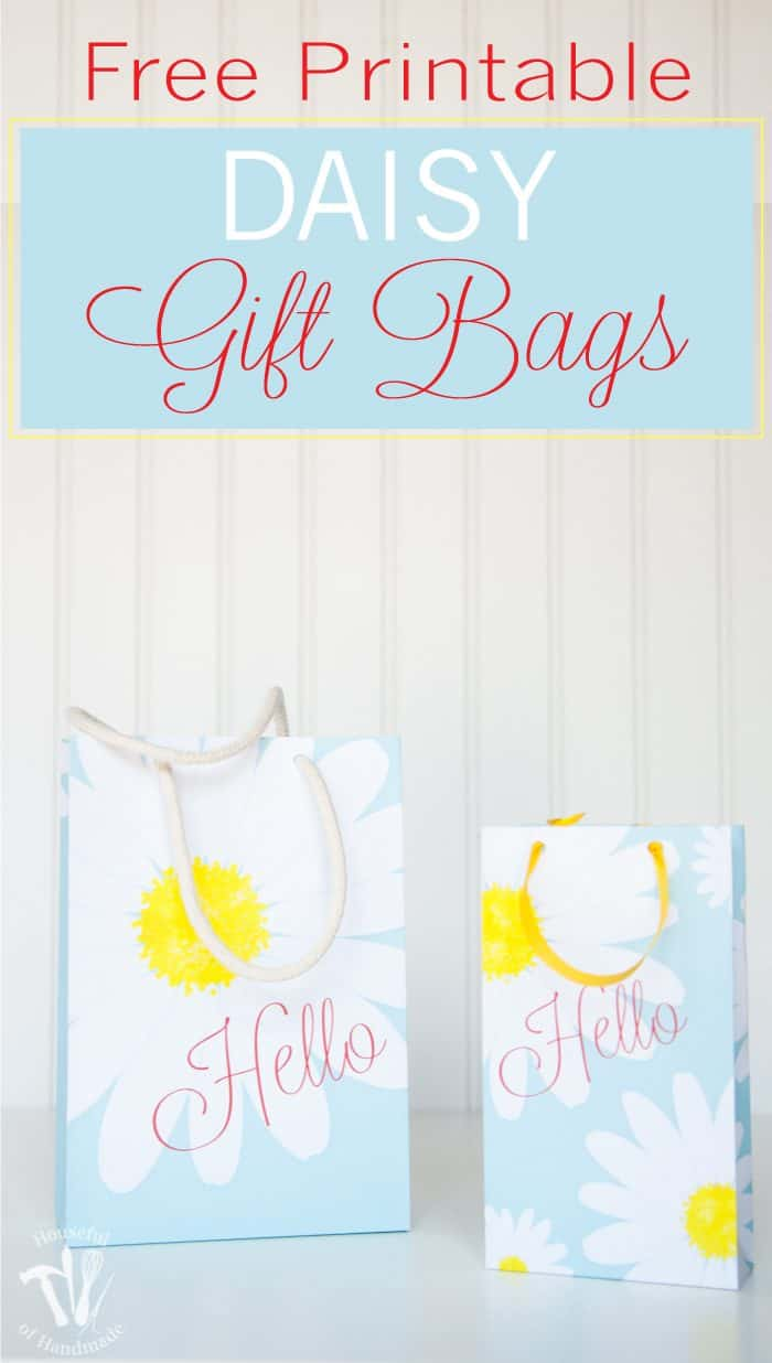 Are you looking for the perfect way to package that special gift idea for Mom? These Printable Daisy Gift Bags are stunning and functional.