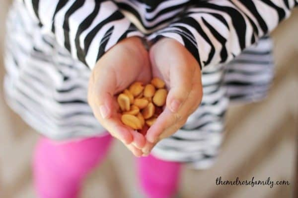 Planters Peanuts Snack