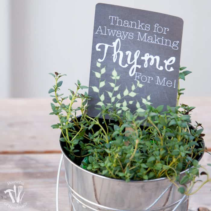 Teacher-Appreciation-Gift-Potted-Herbs-with-Tags-1