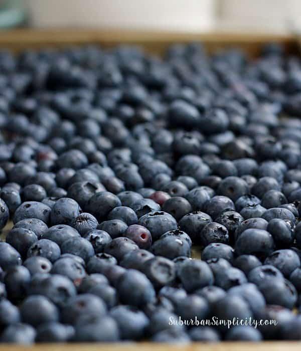 blueberry cobbler blueberries