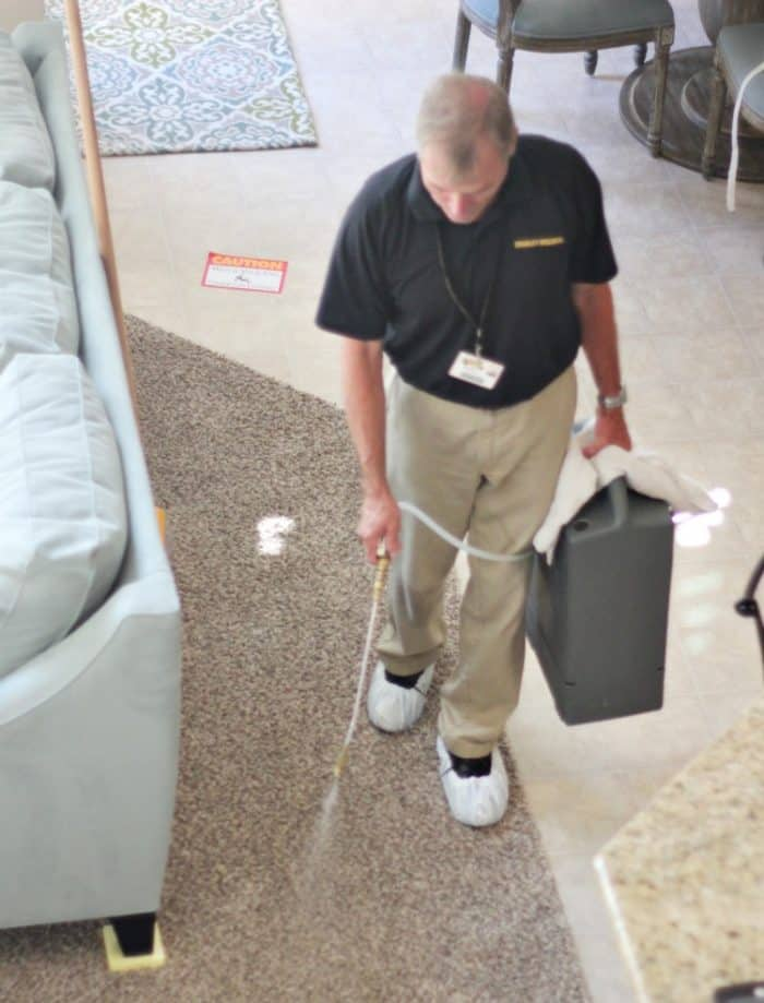 Carpet Cleaning Tips with deodorizer