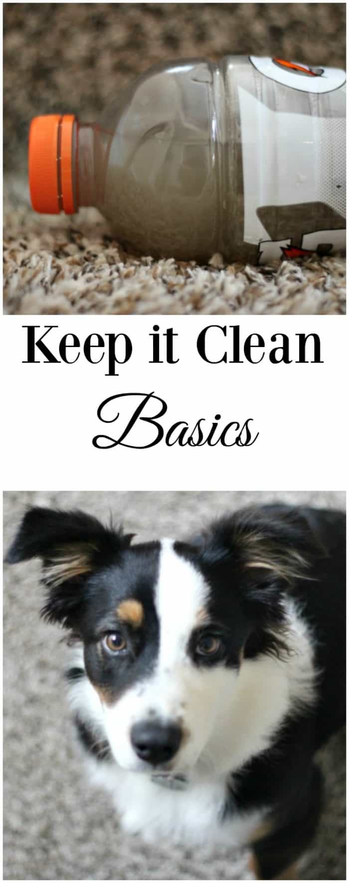 keep-it-clean-basics