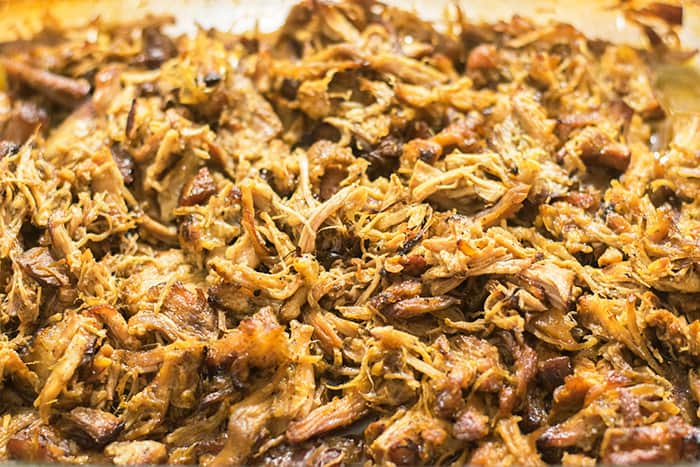Pork Carnitas shredded and ready to be placed in tortillas