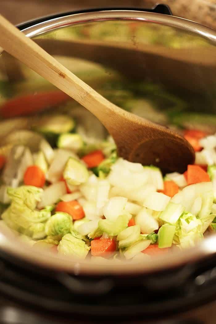 Instant Pot Chicken Noodle soup with vegetables inside the instant pot