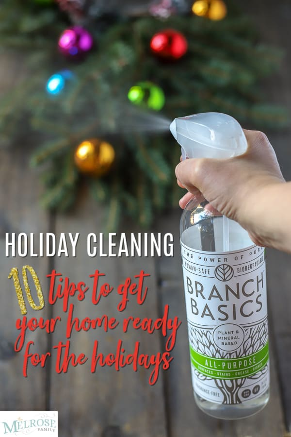All-purpose cleaner spraying with greenery and ornaments in the background