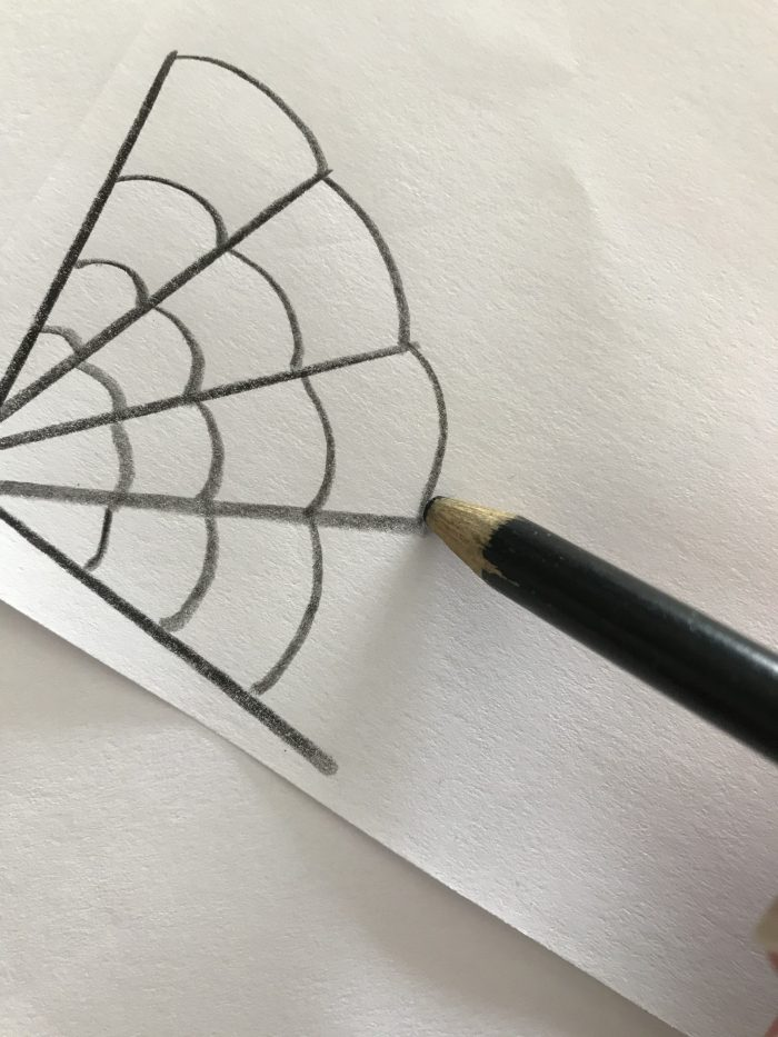 Process of drawing spider web