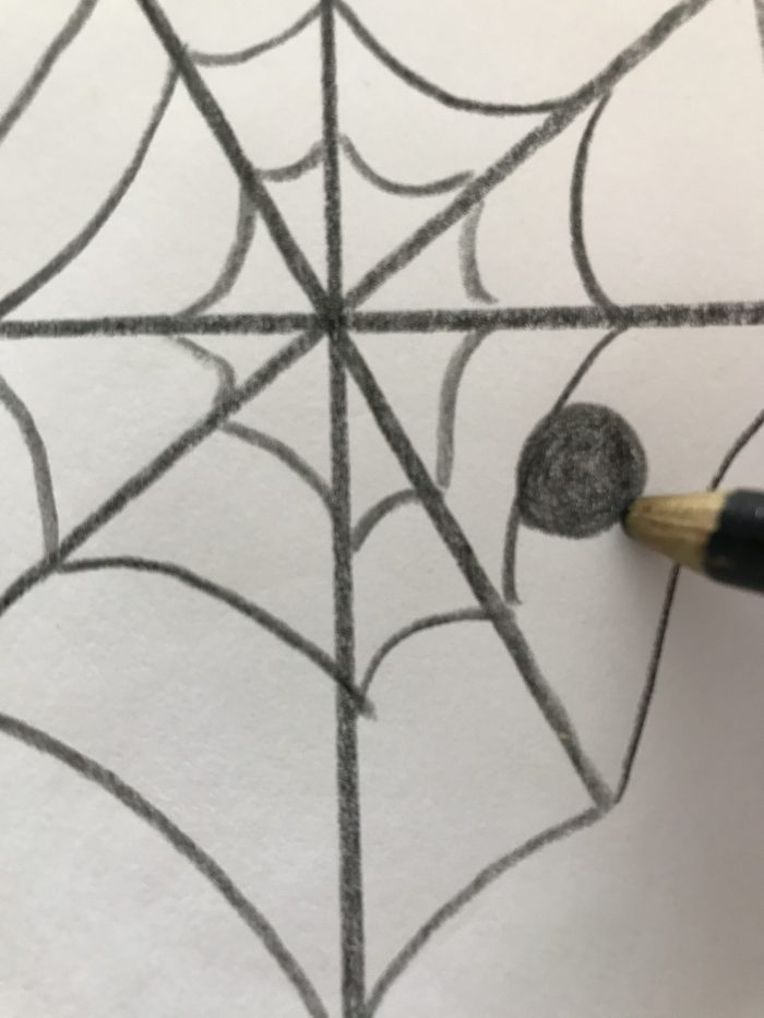Drawing a spider web with a spider